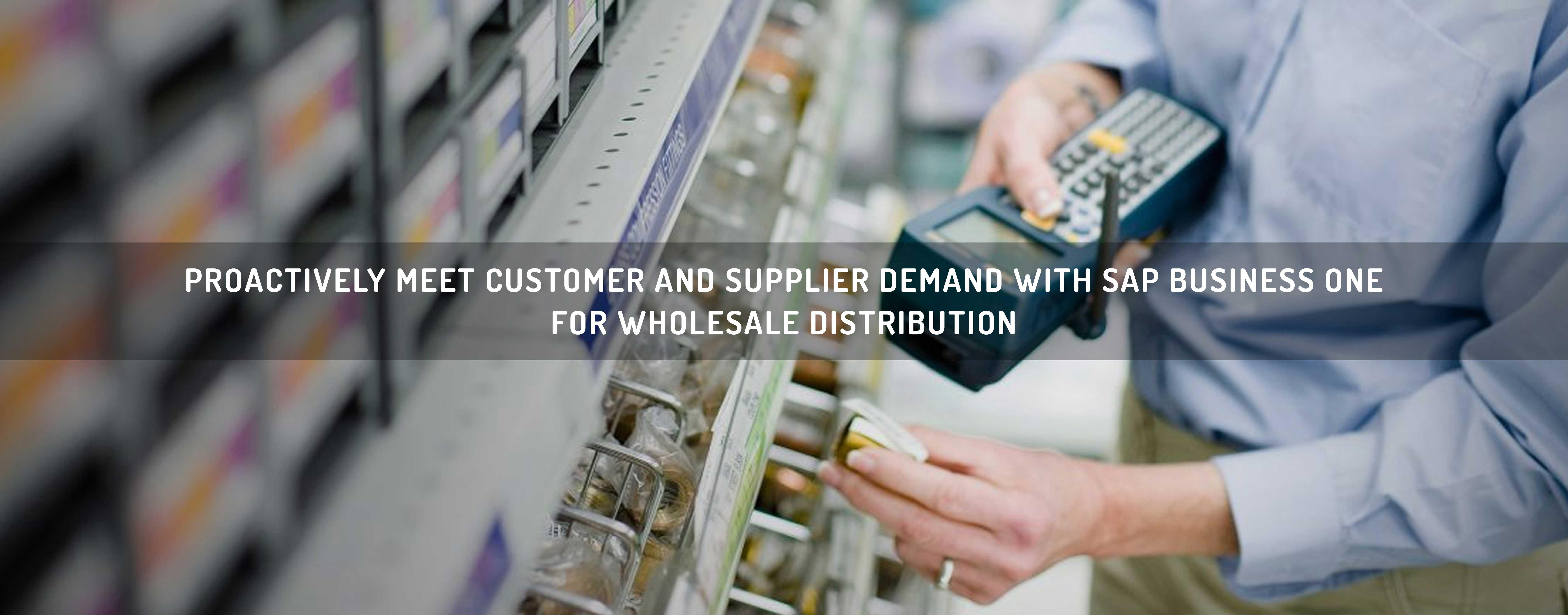 Vernus IT Solutions : Wholesale Distribution